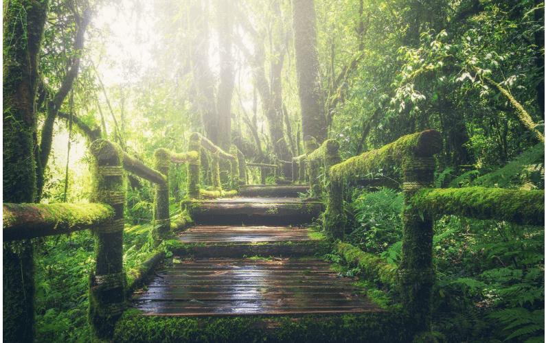 Gli stadi del risveglio spirituale: come imparare ad accettarsi
