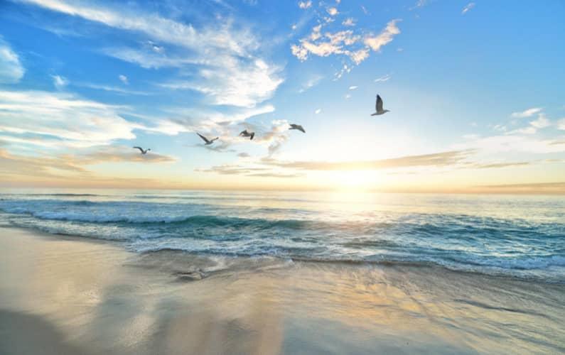 5 articoli da recuperare durante le vacanze 2021